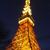 東京タワーの夜景 ベストショット!